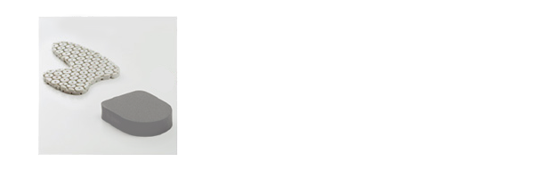Forward Assist Insert
