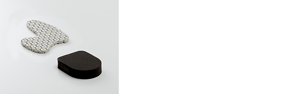 Forward Assist Insert 2.0 & Impact Catcher