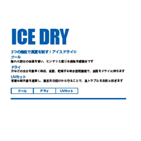 ICEDRY